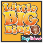 Little Big Bingo
