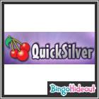 Quicksilver Bingo